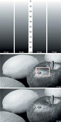 Рис. 9. Тест для экспериментов с различными растровыми структурами