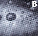 Рис. 10. Результаты тестирования растровых структур: А - Elliptical; В - Euclidean; С - LG Line. Линиатура - 75 lpi